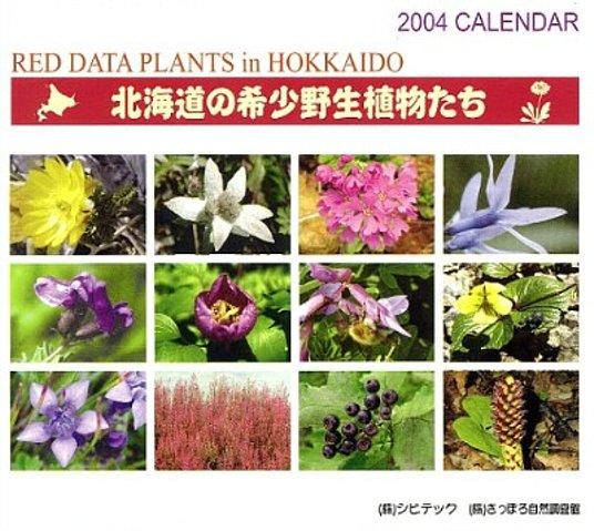 2004年カレンダー