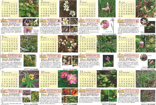 2007年カレンダー